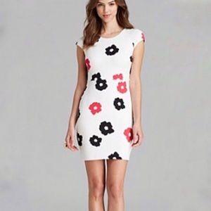 2/$40 Bailey 44 Floral Pop Neoprene Dress
